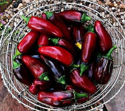 Wall Art - Photograph - Red Jalapeno Peppers by Dene Brock