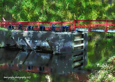 Photograph - Red Pops Along The Canal by Tami Quigley