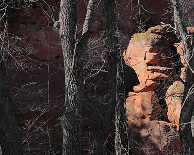 Photograph - Red Rock 1663 by John Moyer
