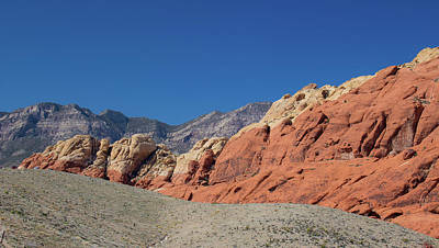 Photograph - Red Rocks by Traci Asaurus