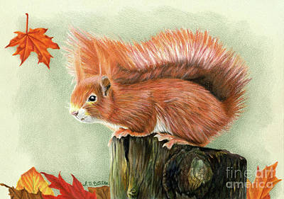 Red Squirrel Wall Art - Painting - Red Squirrel In Autumn by Sarah Batalka