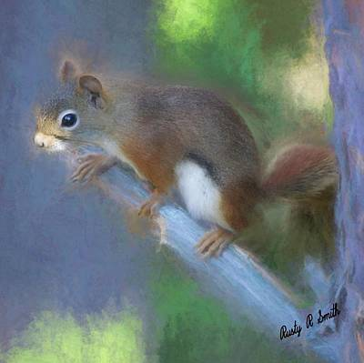 Digital Art - Red Squirrel Portrait. by Rusty R Smith