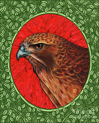 Painting - Red Tailed Hawk Portrait - Green Border by Amy E Fraser
