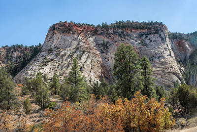 Photograph - Red Topped Mesa by John M Bailey