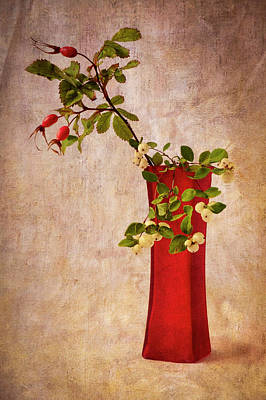 Photograph - Red Vase With Wild Rosehips And Berries by Mary Lee Dereske