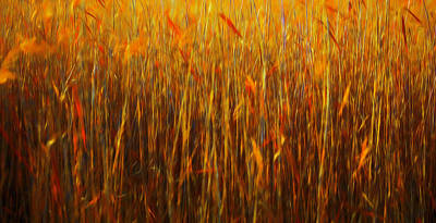 Digital Art - Reeds Abstract #i1 by Leif Sohlman