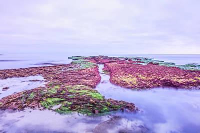Photograph - Reef Of Dreams by Joseph S Giacalone