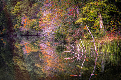 Photograph - Reflecting On Autumn by Debra and Dave Vanderlaan