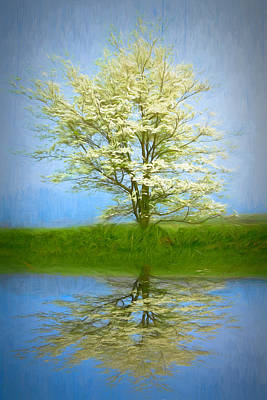 Photograph - Reflecting On Spring Painting  by Debra and Dave Vanderlaan
