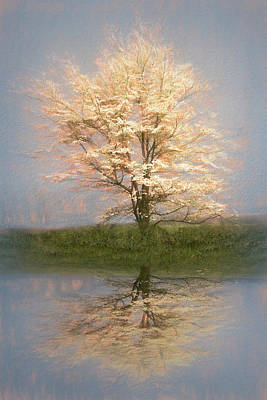 Photograph - Reflecting On Spring Textured by Debra and Dave Vanderlaan