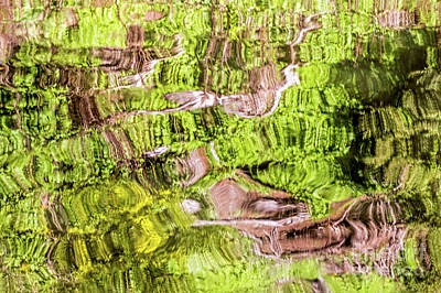 Photograph - Reflection Abstract by Kate Brown