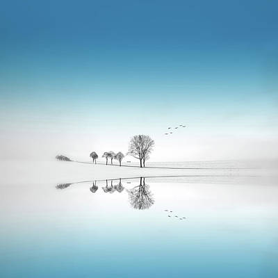 Photograph - Reflection Of Trees by Philippe Sainte-laudy Photography