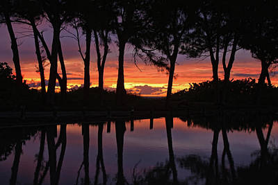 Photograph - Reflections At Sunset by HH Photography of Florida