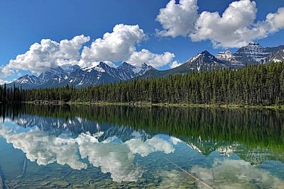 Photograph - Reflections by Images Unlimited