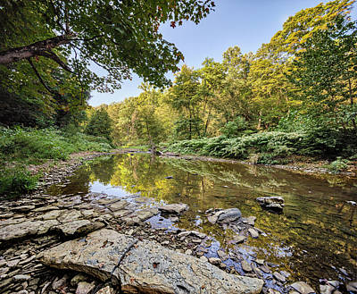 Photograph - Reflections In Nature by Adam Kilbourne