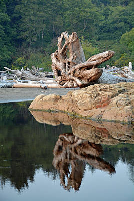 Photograph - Reflections In Olympic National Park by Bruce Gourley