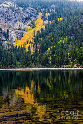 Photograph - Reflections by Jon Burch Photography