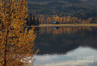Photograph - Reflections Of Country by Idaho Scenic Images Linda Lantzy