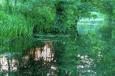 Photograph - Reflections Of The Evening Sun In The Spreewald by Sun Travels