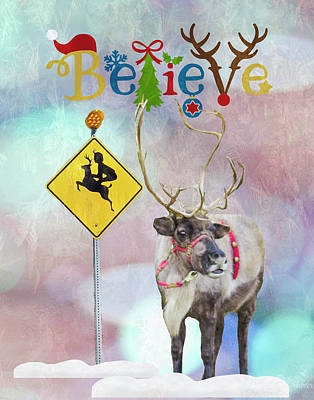 Photograph - Reindeer Crossing by Steph Gabler