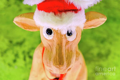 Royalty-Free and Rights-Managed Images - Reindeer Rudolph Christmas Hat Ornament Character Face Portrait Looking At Camera Toy Decoration by Luca Lorenzelli
