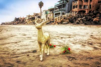 Photograph - Reindeer Walk by Alison Frank