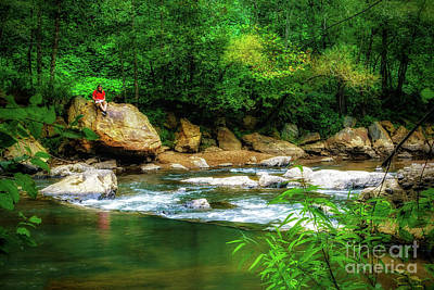 Photograph - Relaxing Along Little River by Nick Zelinsky