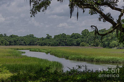 Photograph - Remley's Point - Salt Marsh by Dale Powell