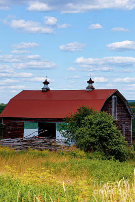Photograph - Remote Red Roof Barn by George Sheldon