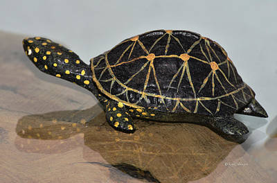 Photograph - Replica Turtle And Shadow by Kae Cheatham