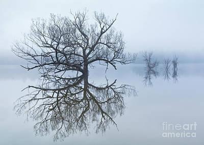 Mannequin Dresses Rights Managed Images - Reservoir Morning Fog 2 Royalty-Free Image by Alan L Graham