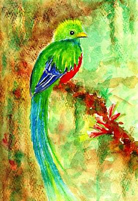 Painting - Resplendent Quetzal  by Carlin Blahnik CarlinArtWatercolor