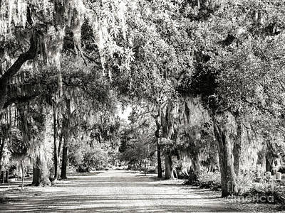 Photograph - Retro Bonaventure Cemetery Savannah by John Rizzuto