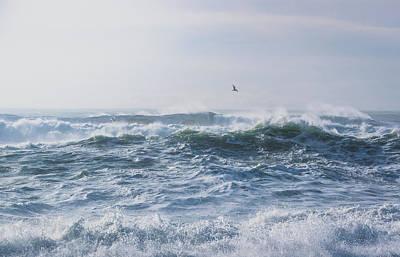 Reynisfjara Seagull Over Crashing Waves Art Print