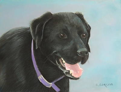 Pastel - Rhett by Carol Corliss