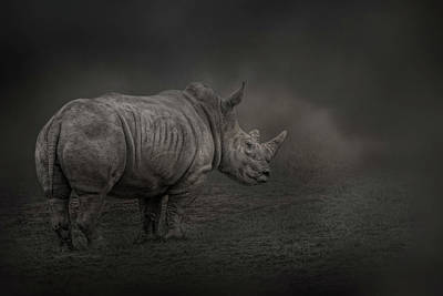 Photograph - Rhino Land by Kelley Parker