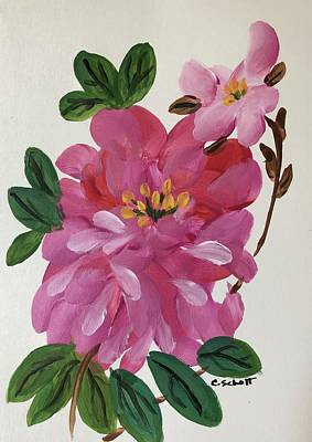 Painting - Rhododendron by Christina Schott