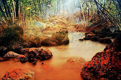 Mixed Media - Rich Jungle Stream by Clive Littin