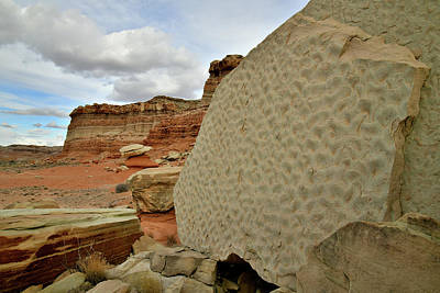 Photograph - Rippled Boulder Along San Rafael Swell In Utah by Ray Mathis