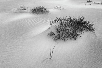Photograph - Ripples, Crane Beach Ipswich Ma. by Michael Hubley