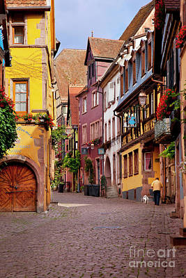 Photograph - Riquewihr Dog Walk by Brian Jannsen