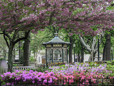 Rittenhouse In Spring Art Print by Stacey Granger