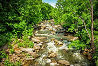 Photograph - River Bank Series Y6121 by Carlos Diaz