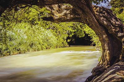 Photograph - River Banks In Trelawny Jamaica by Debbie Ann Powell