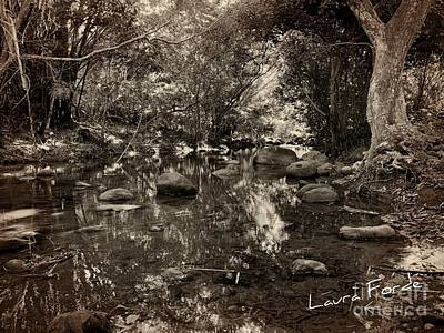 Photograph - River by Laura Forde