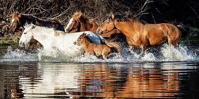 Photograph - River Run by Mary Hone