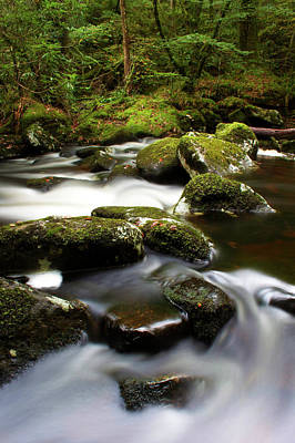 Photograph - River Teign, Dartmoor National Park by Jeremy Lightfoot / Robertharding