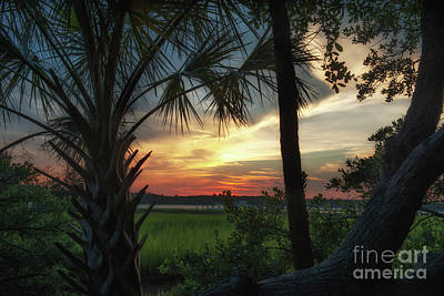 Photograph - Rivertowne Southern Sunset Paradise by Dale Powell
