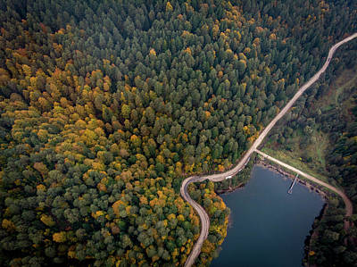 Photograph - Road Inside The Forest by Okan YILMAZ