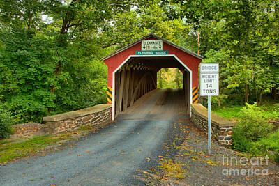 Photograph - Road Through The Fleisher Covered Bridge by Adam Jewell